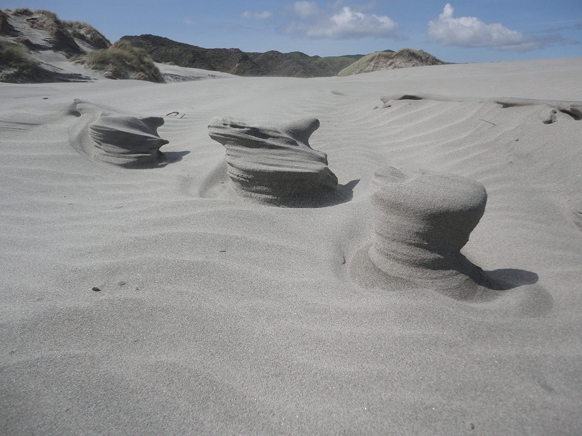 New Zealand | Sand Sculptures On The Beach